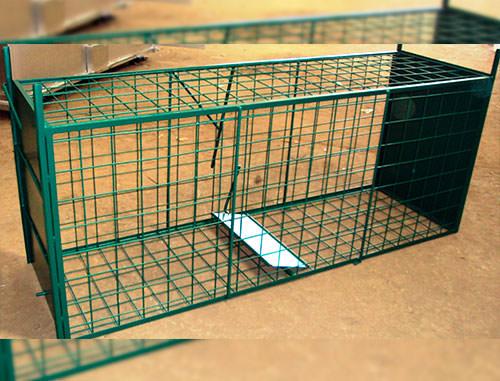 jaulas trampa para caza menor