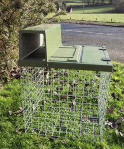 jaula trampa conejo