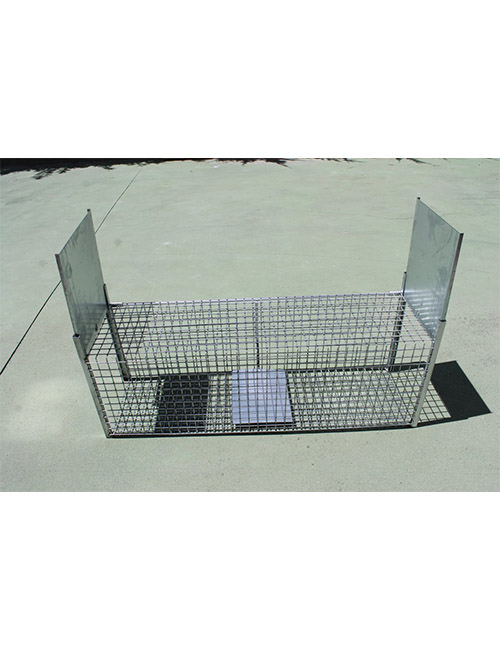 jaula trampa para gatos